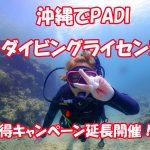 沖縄でダイビングライセンス 恩納村で開催 格安キャンペーン